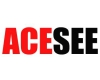 ACESEE Security Limited