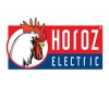 Horozk Electric